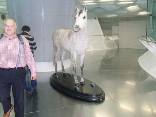 Wollte er das Pferd besteigen ???