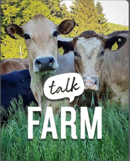 Farm Talk mit der Juckerfarm