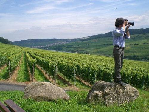 Un régal pour les photographes !
