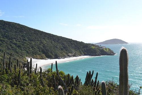 Playa del Pontal