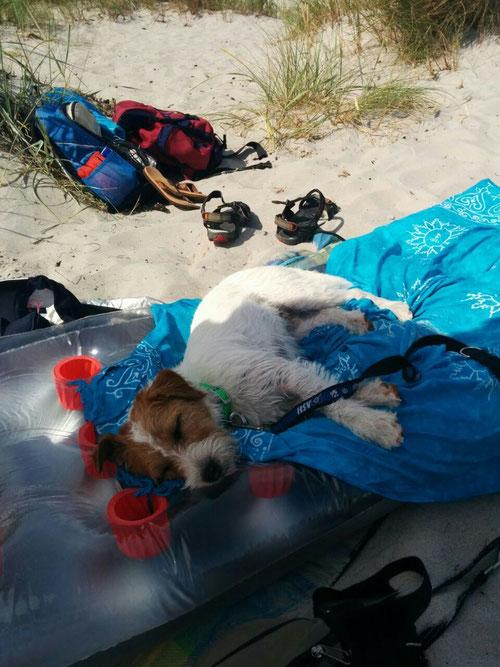 Hannes brauch seinen Schlaf, nach dem baden am Strand