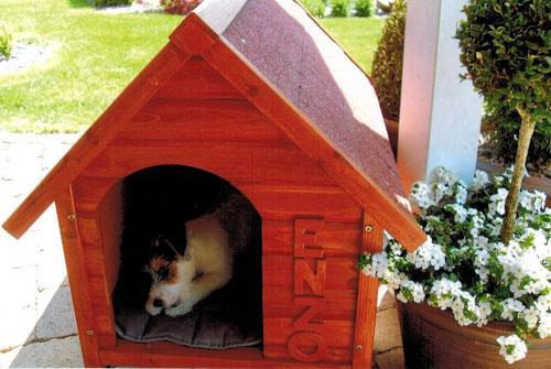 Ich habe mein eigenes Haus!