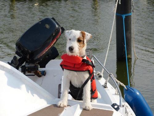 Nimm mich mit Kapitän auf die Reise