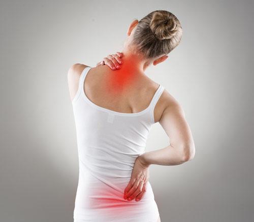 Ingwer Wirkung bei Schmerzen