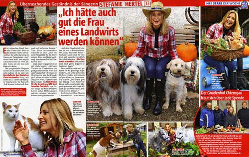 """aus """"Das neue Blatt"""" - Nov. 12 - Schneider Press / Erwin Schneider"""