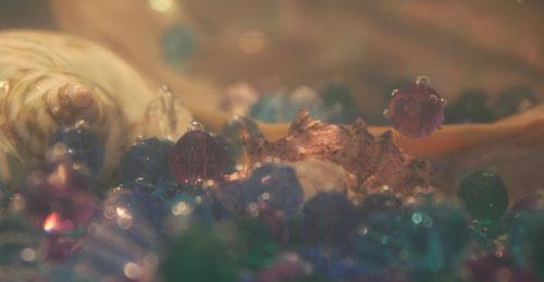 Fantasie & Wirklichkeit Fotografien und Gedichte Kathrin Steiger Muschel Perlen unter Wasser märchenhaft