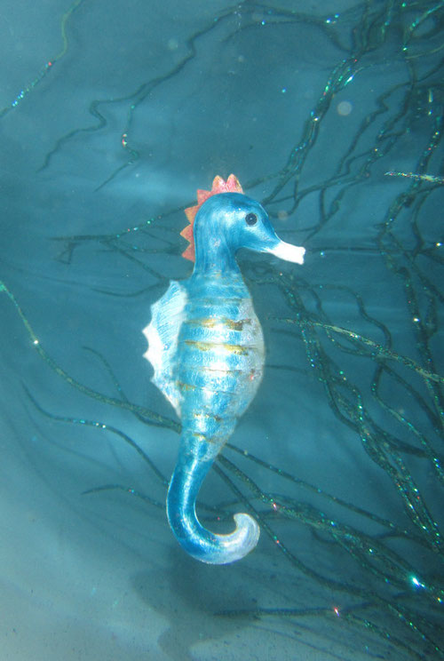 Fantasie & Wirklichkeit Fotografien und Gedichte Kathrin Steiger Seepferdchen märchenhaft