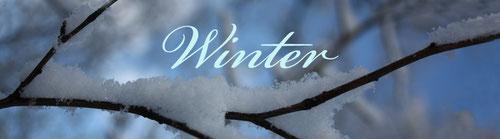 Hier klicken um zu den Winterbildern zu gelangen