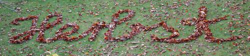 Fantasie & Wirklichkeit Fotografien und Gedichte Kathrin Steiger Überschrift Herbst Schriftzug Buchstaben aus Blättern Herbstblätter