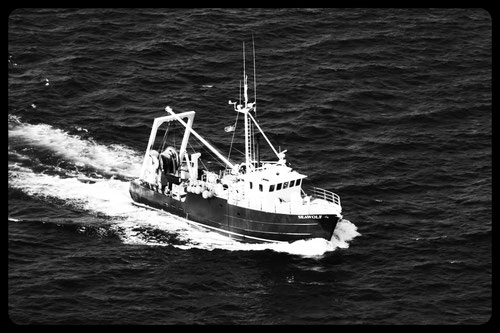 Sea Wolf Scientific Trawler; New Jersery Department of Natural Resources
