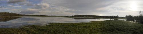 Bord de la Sarthe - Basses vallées angevines (49) - 13/11/2013
