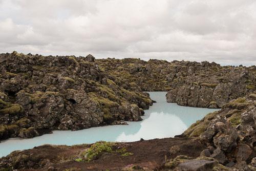 Champs de laves avec des eau riche en silicate - région de Grindavík - 13/07/2014