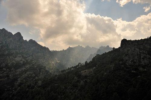 Ambiance dans la vallée du Tavignanu - 2B - 25/07/2013