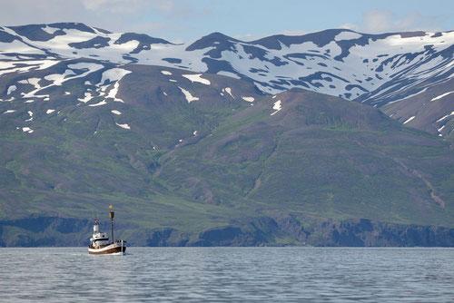 Islande - Húsavík - 23/07/2014