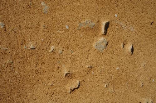 Enduit à la chaux aérienne et sable brut (image)