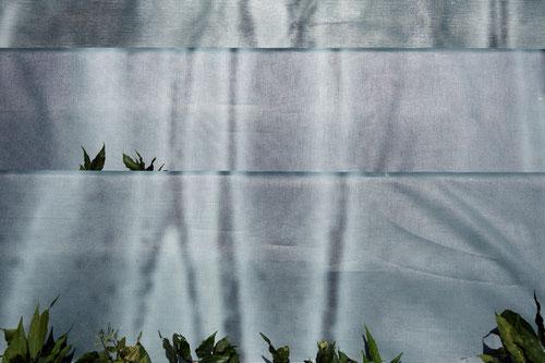 """Foto©c.redtenbacher, """"SeeGrund = MehrBoden"""" / Installation / Ort: Eingang bis Garten"""