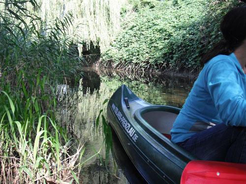 Lauschiger Fluß, selbst im Herbst ein traumhafter  Hingucker