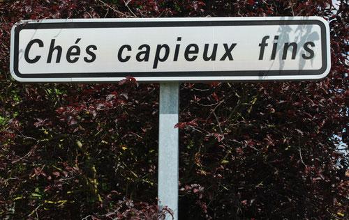 Demuin (canton de Moreuil)