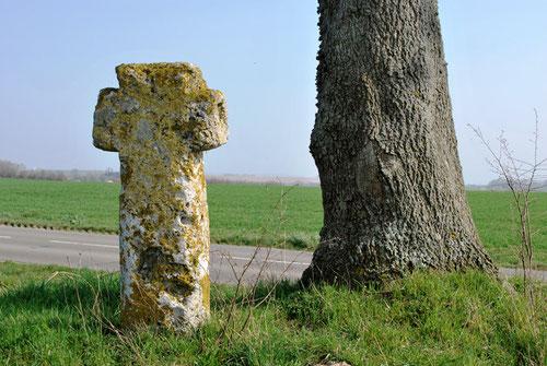 La Croix qui corne- Cambron-Moyenneville