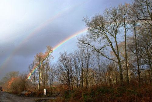 Double arc-en-ciel en forêt de Crécy