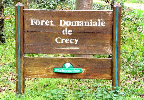 Panneau d'entrée dans la forêt