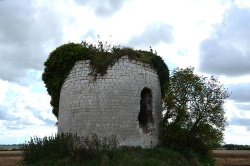 Dominois (canton de Crécy-en-Ponthieu)- Août 2014-