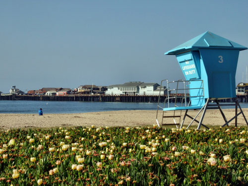 Santa Barbara, Stearns Wharf
