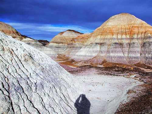 Blue Mesa: Selbstporträt
