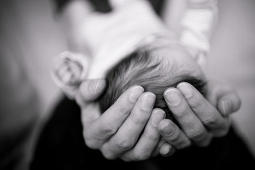 Newborn Shooting Julia Kollmann Photography