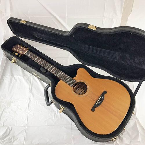 James ジェームス アコースティックギター (エレアコ) JE100NS