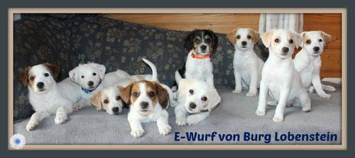 Eddi-Lennox/Emil/Emu-Louis/Espresso/vorne Elfe/hinten Elvis/Elmo/Elli/Enzo