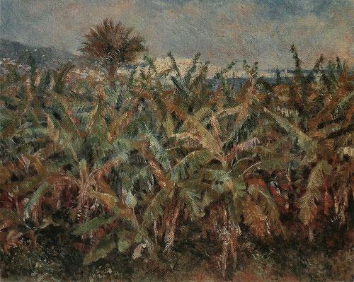 Renoir,Champ de bananiers 1881