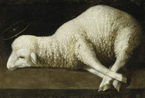"""Agnus Dei, Zurbarán.1639.Museo Real Academia de Bellas Artes S.Fernando.Esta imagen solo interpretada en clave litúrgica,con profundo contenido religioso.Iconográficamente relacionado con la Eucaristía además de la inscripción""""Tanquam Agnus in occisione"""""""