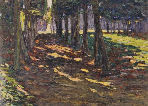 El parque de Saint Claud,camino en sombra,1906.Legado Nina Kandinsky.En la primavera de ese año viaja a Paris con Gabriele Munter,su pareja,itilizó técnicas impresionistas con aire limpio y brillante luz.