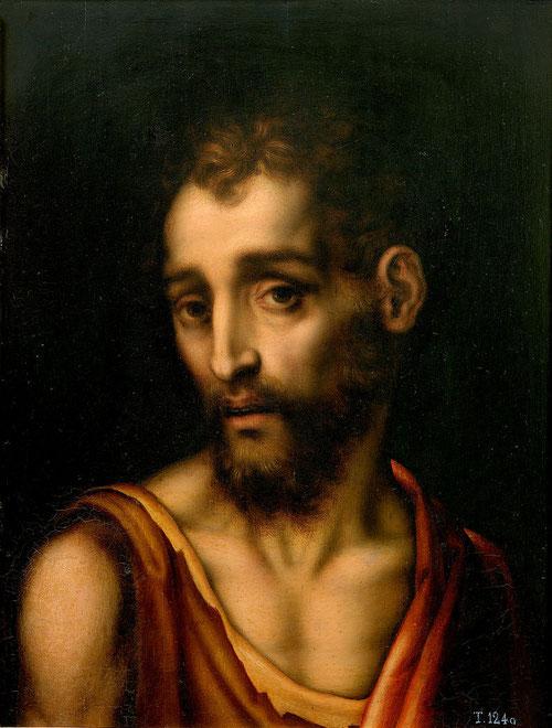 San Juan Bautista 1566,óleo sobre tabla de roble,52x39cm.M.Prado. Uno de los santos mas comunes en la iconografía tradicional, mirada melancólica, ropa raída y de piel de camello, ermitaño.
