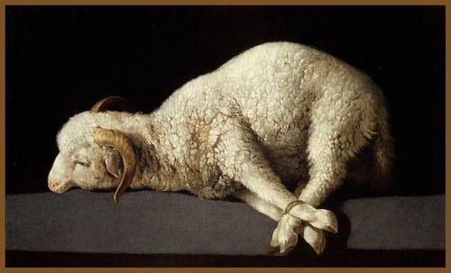 Agnus Dei,1635.Zurbarán Representa al cordero como víctima propicia al sacrificio, por tanto como símbolo de Cristo cuya muerte salvaría a la humanidad del pecado.Ejemplo de su capacidad tecnica y sensibilidad.