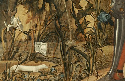 """Interesante lectura simbólica del cartellino """"MALO MORI QUAM FOEDARI""""...antes morir que contaminarse en las aguas estancadas de sapos y ranas(el pecado)  en relación al armiño simbolo del honor intachable masculino, es frecuente su uso en heráldica."""