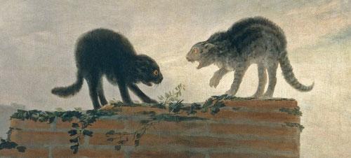 Riña de gatos.Goya,1786.Museo del Prado.La irracionalidad humana con sus bajezas en nada difiere de los animales, como los gatos y perros...