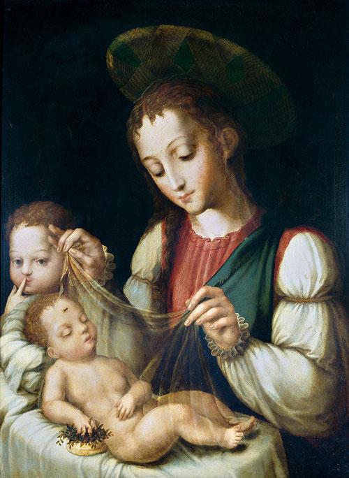La Virgen con el Niño y San Juanito que con ojos azules pide silencio al espectador, una mosca cubre su velo,prefigurando el tormento y la Pasión de Cristo.Un suave sfumato moldea todas las figuras,técnica impecable de inconfundible estilo Morales.