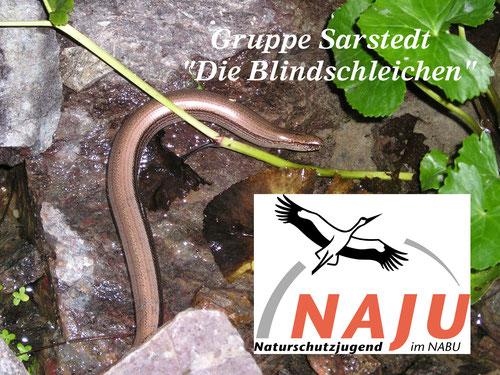 Foto NABU