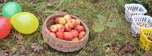 Korbinian Aigner Äpfel