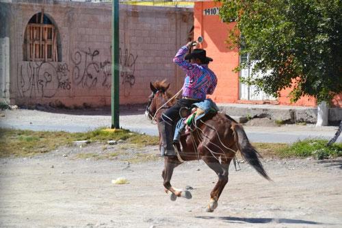 Fortbewegung auf mexikanisch so...