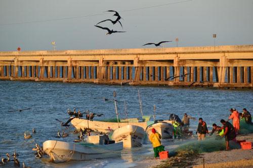 Fischerboote im Sonnenaufgang