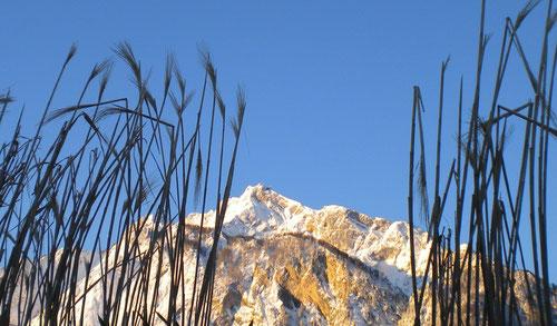Untersberg im Winter