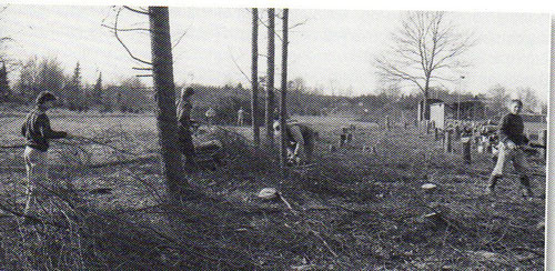 Vereinsangehörige roden die Bäume auf dem benachbarten Grundstück, um die Voraussetzungen für ein Planieren des Geländes zu schaffen.