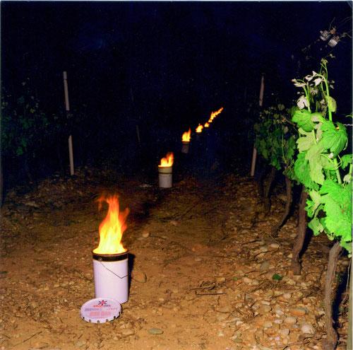 (Höhe der Flamme ca. 15-20 cm)