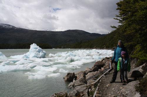 Gletscher Serrano, Eisberge