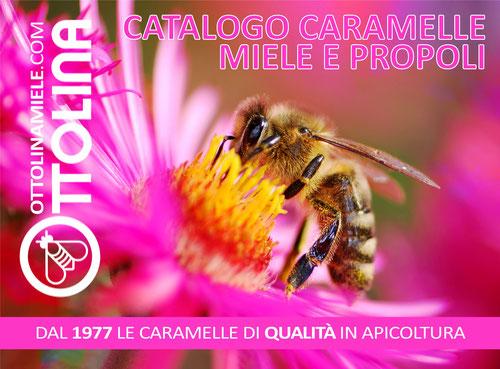 Catalogo caramelle 2020, disponibile prossimamente!
