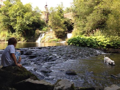 Pyrmonter Mühle am Wasserfall