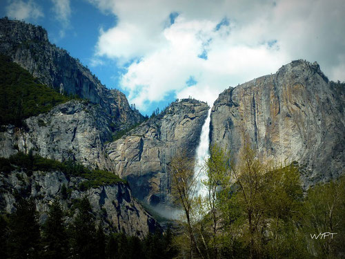 © Winifred. Utterly stunning - Bridalveil Fall at Yosemite National Park. May 2010